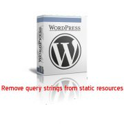 WordPress remove query strings from static resources
